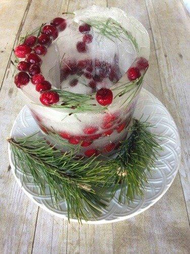 Christmas Ice Mold