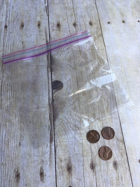bag and pennies