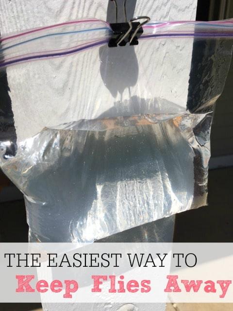 the easiest way to keep flies away