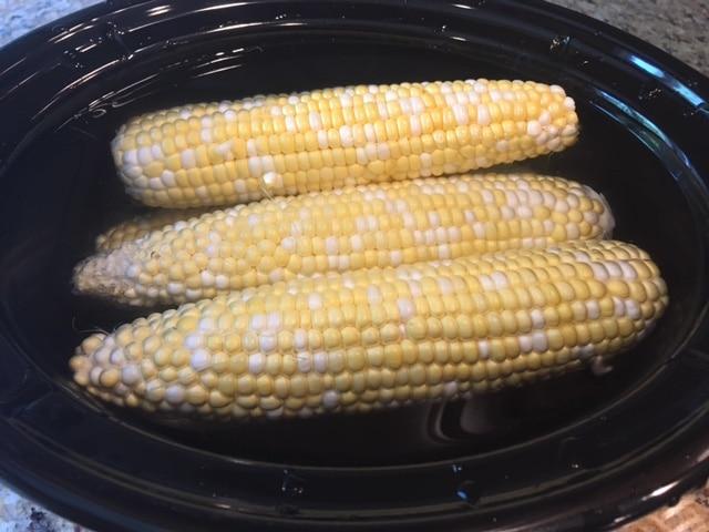 corn in water