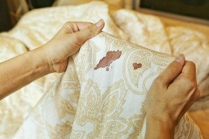 how to get blood out of sheets