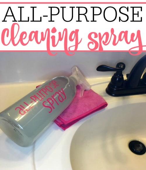 homemade all purpose spray