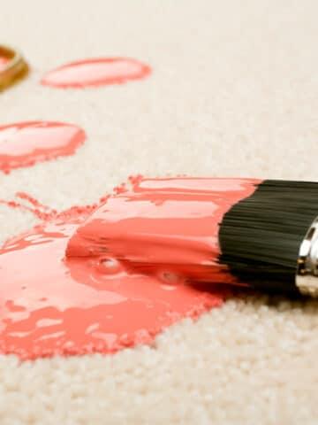 paint in carpet
