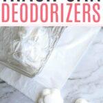 homemade trash can deodorizer tabs