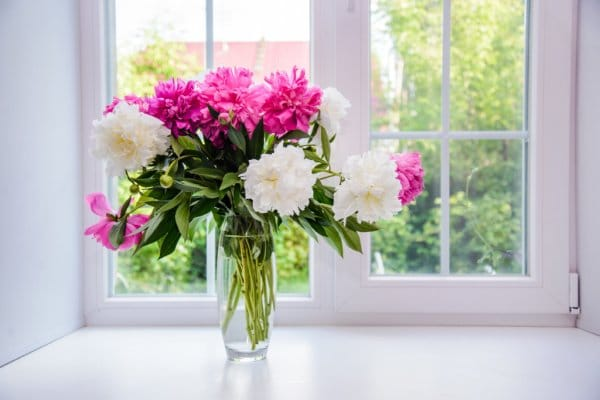 flowers as a christmas gift